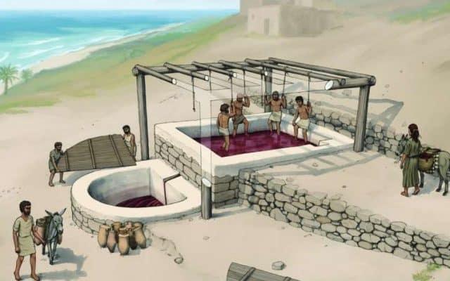 O echipă de arheologi au descoperit un teasc de vin fenician cu o vechime de 2600 de ani