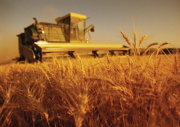 Cum va fi acordată motorina donată R. Moldova de către România pentru sprijinirea agricultorilor afectați de secetă ~ InfoPrut