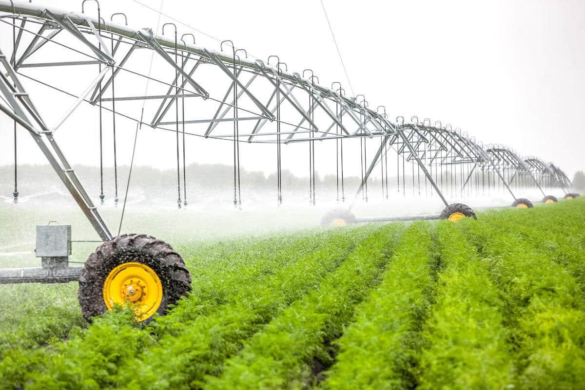 Polonia construiește 19 bazine de acumulare pentru irigarea terenurilor agricole