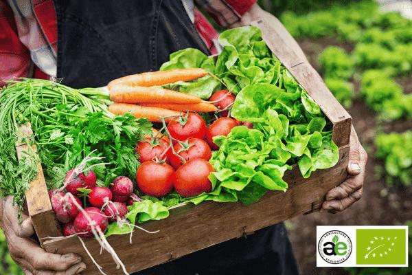 UE susține produsele agricole ecologice de calitate din R. Moldova ~ InfoPrut