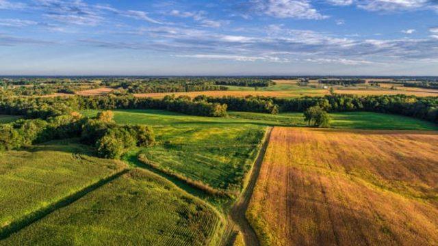 ULTIMA ORĂ! OUG aprobată pentru terenurile agricole degradate. Executivul a adoptat decizia!
