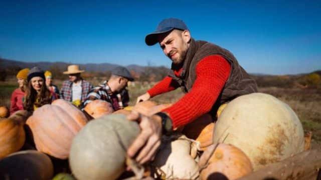 AFIR: Fondurile europene pentru fermieri – epuizate la nivel național! Sprijinul maxim: 70.000 euro/fermă