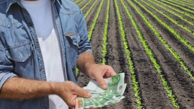 Mesaj ferm al șefului APIA despre plata avansului din subvenții!