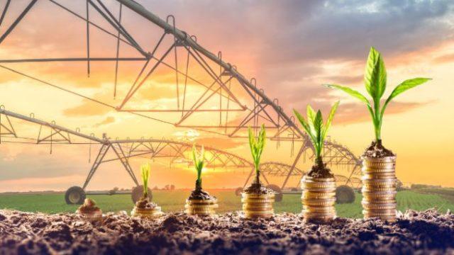 Ucraina: Plan național de irigații în valoare de 4 miliarde de dolari